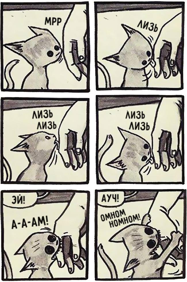 комиксы-про-отношения-кошек-и-людей-5