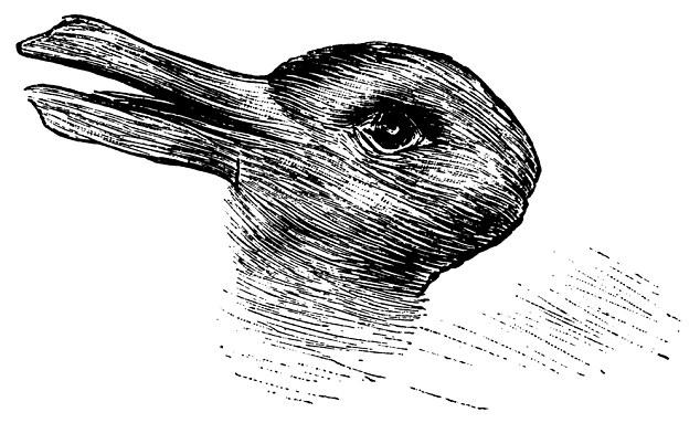 утка кролик