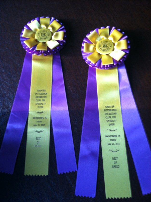 Best in Specialty Show  - x2
