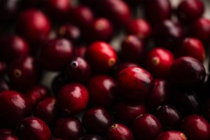close up of a bunch of cranberries