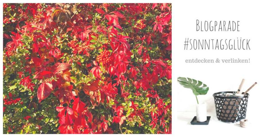 Blogparade #sonntagsglück: Hier kommt der Herbst!