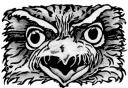 Tawny Frogmouth Graphite