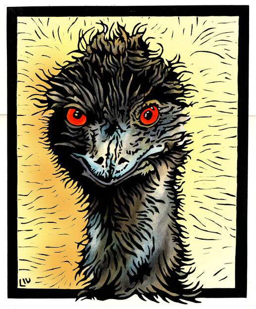 Mad Emu 2WEB