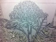 Lino carving progressions - Waratah 1