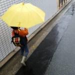 子どもの傘。年齢別の適性サイズはこれ!通販や会社近くで買う時に便利♪