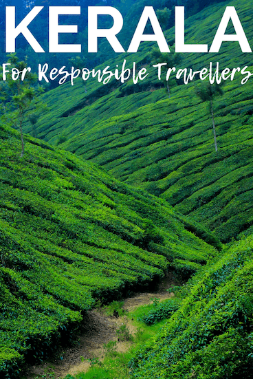 planning travel to kerala? Check our complete guide to Kerala for responsible travellers, including tips on how to get off the beaten path, how to travel the kerala backwaters, and how to get the most out of your trip! Pin this to one of your boards for later. #kerala #keralatravel #travelguide #responsibletravel #kerala