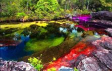 """Canos Cristales (known as """"the river of five colors"""") in Colombia1"""