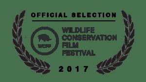 Festivals and awards, award-winning film, documentary, conservation, Wildlife Conservation Film Festival
