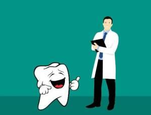 歯と歯医者