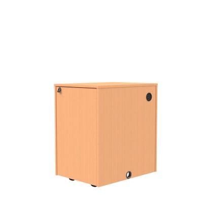 16 RU wood veneer equipment rack