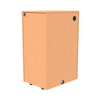 24 RU wood veneer equipment rack