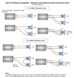 infographic diagram for how to bridge an amp and connect to speakers correctly [ 986 x 1024 Pixel ]