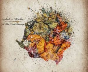 Scale & Feather – A Slow Forest Burning Album Download