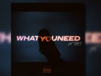 Jae Stephens – What You Need Ft. THEY Mp3 Download
