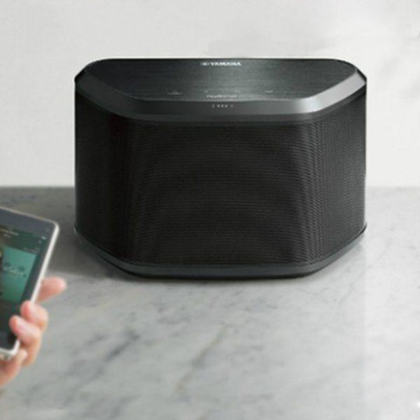 WX-030 Black (3)