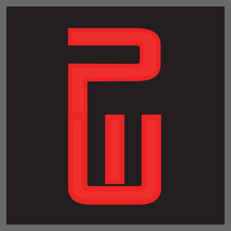 8_PW Logo Square300