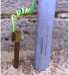Español: Jabalina/ toma de tierraEnglish: Electrical Grounding