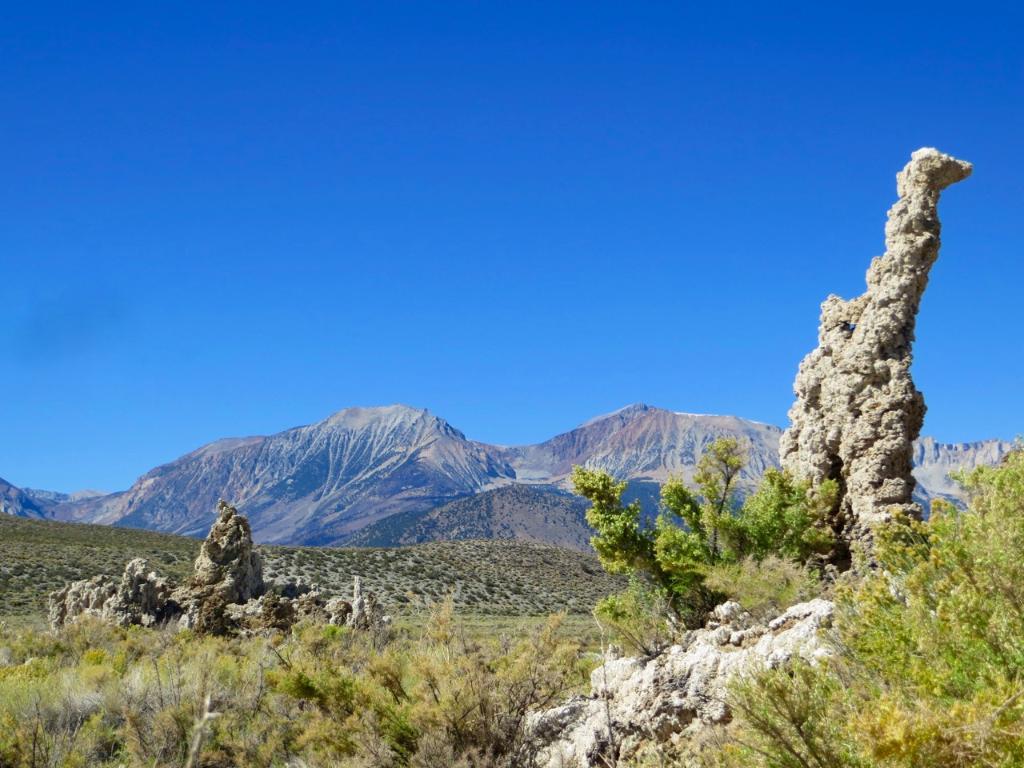 Tufa looking west toward mountains