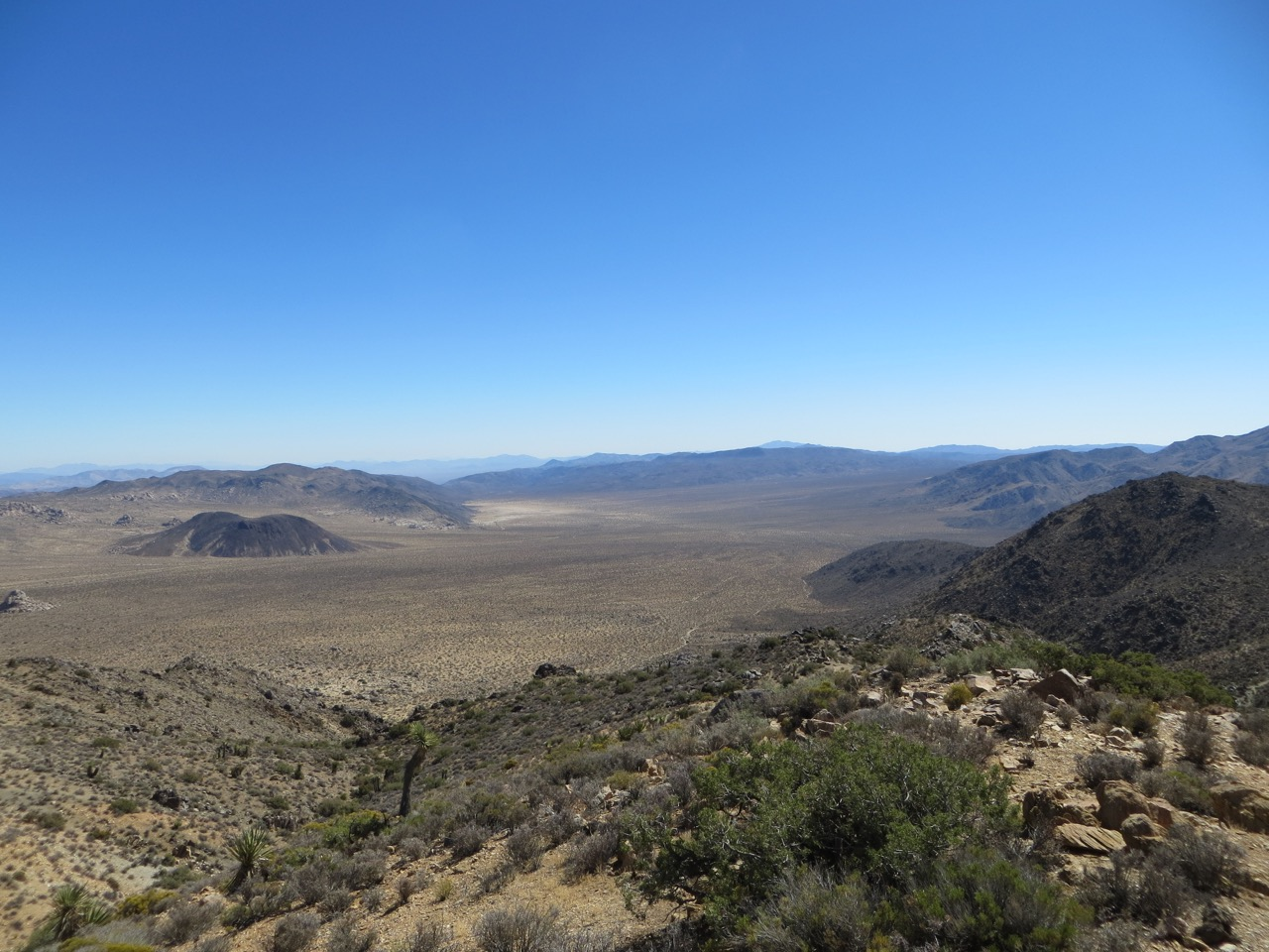 Large expanse of desert in Joshua Tree