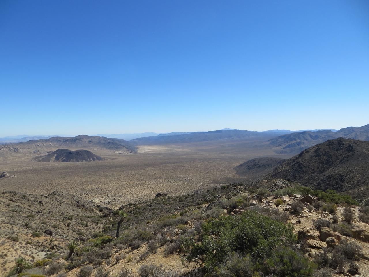Large expanse of desert in Joshua Tree