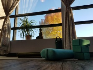 Yin Yoga Teacher Training in Omaha