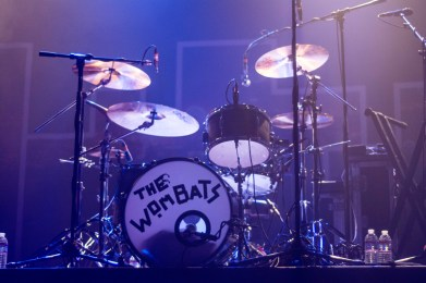 The Wombats by Tim Briggs
