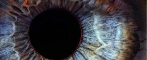 blue-brown-eye_1024