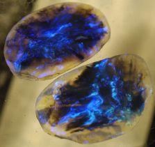 Fulger - opal negru