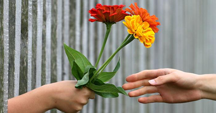 generozitate, a oferi, comportament pro-social