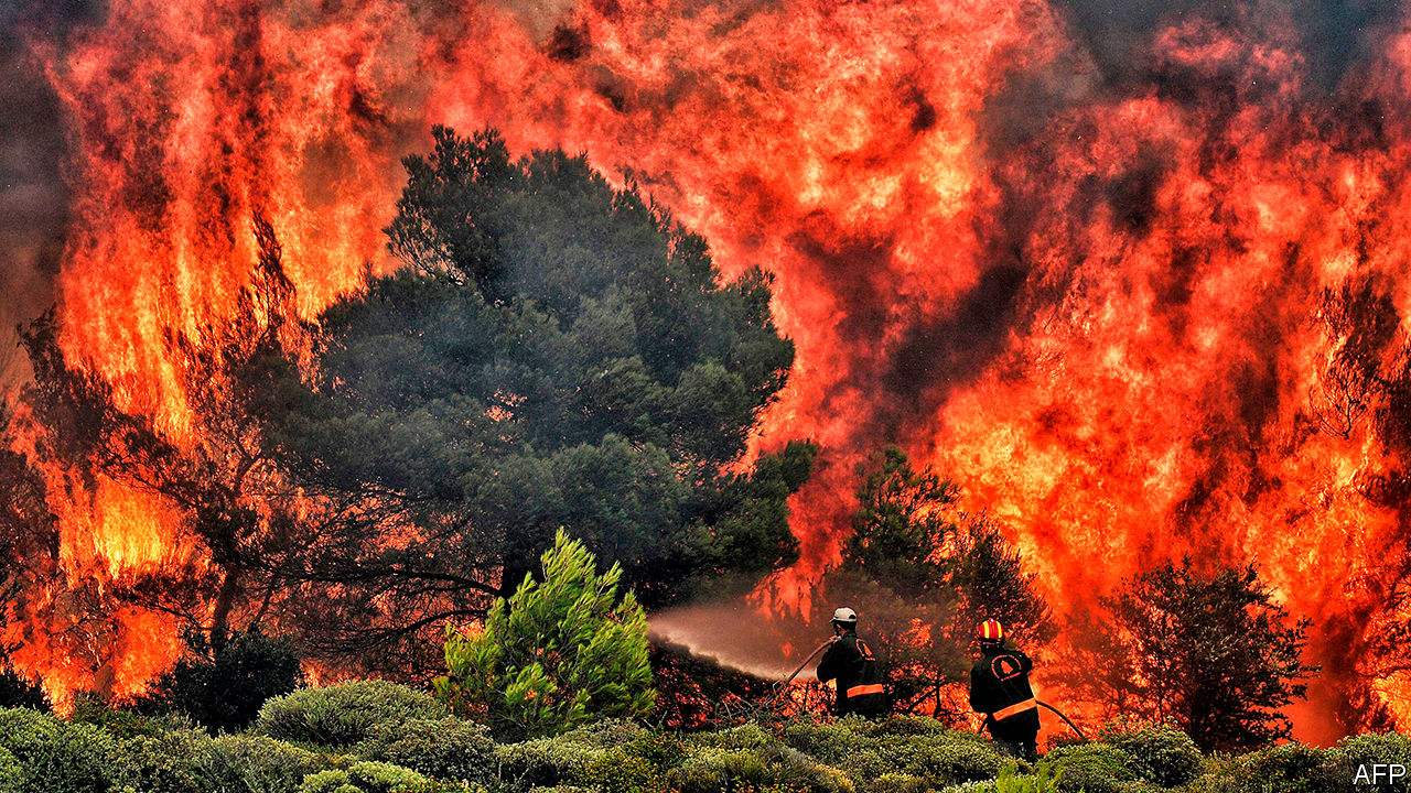 Incendiu de Padure - The Economist