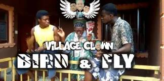Village Clown - Difference Between Bird & Fly