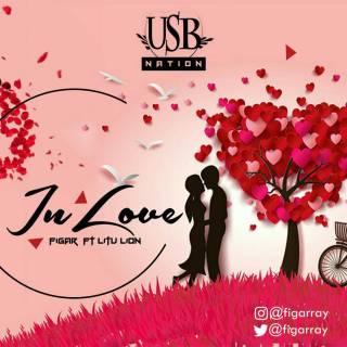 Figar ft. Litu Lion - In Love