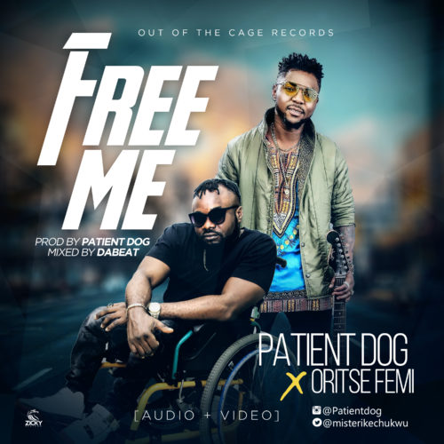 patient dog, oritse femi