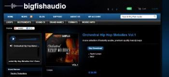 Big Fish Audio Orchestral Hip Hop Melodies Vol 1
