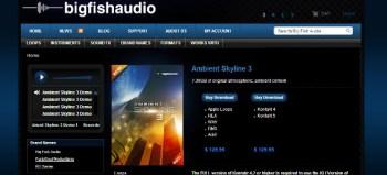 Big Fish Audio Ambient Skyline 3