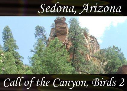SoundScenes - Atmo-Arizona - Sedona, Call of the Canyon, Birds 2