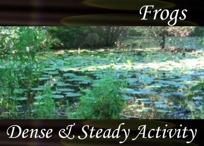 SoundScenes - Atmo-Frogs - Dense and Steady Activity