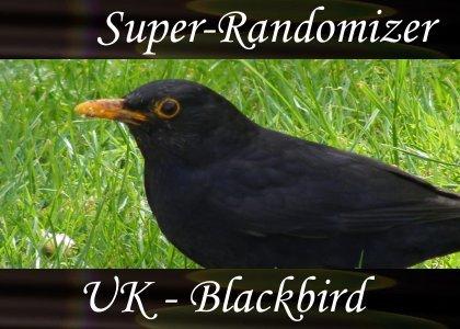 Blackbird (33 Sounds)