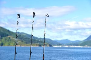 Sunshine, clear skies and calm waters for fishing in the Queen Charlotte Sound