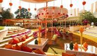 Four Best Indian Theme Wedding Styles | Soundspirit - The ...