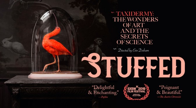 Premiere: Ben Lovett Debuts Two New 'Stuffed' Cues From The Eye Opening Taxidermy Documentary