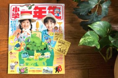「小学一年生」8月号付録にシードペーパー
