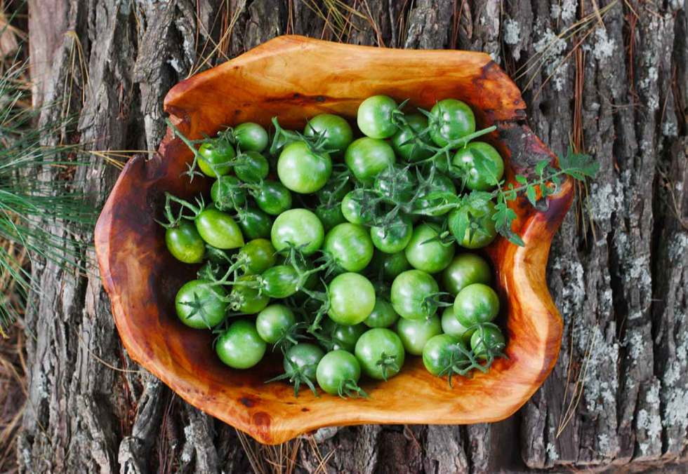 Green cherry tomatoes for Green tomato pickles
