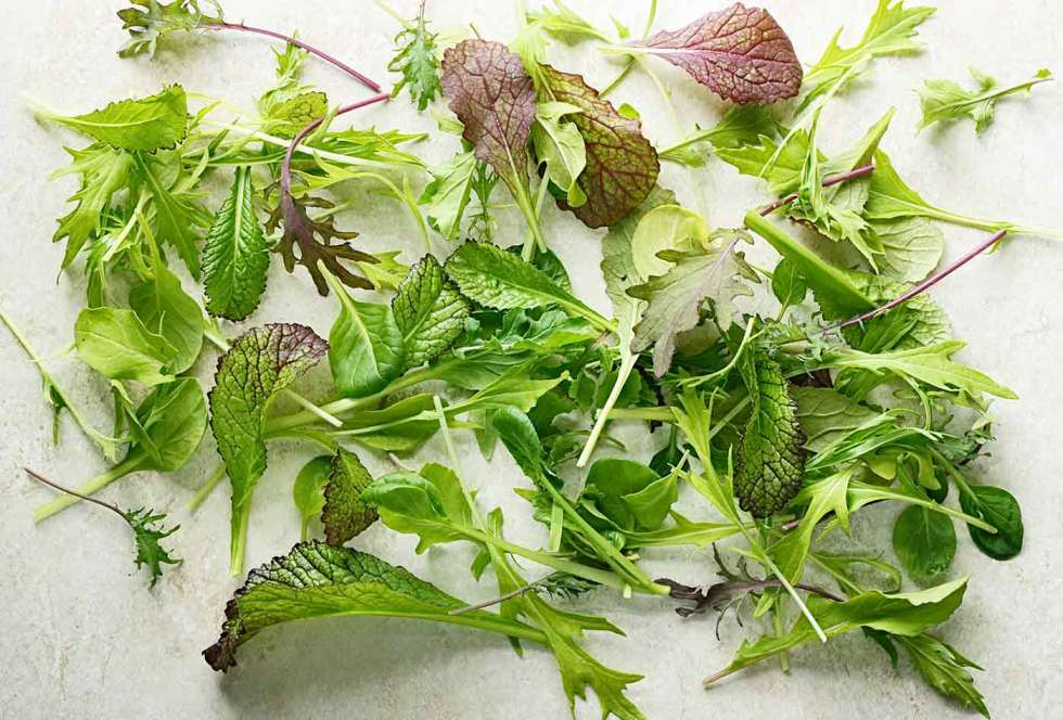 Spring baby greens mix