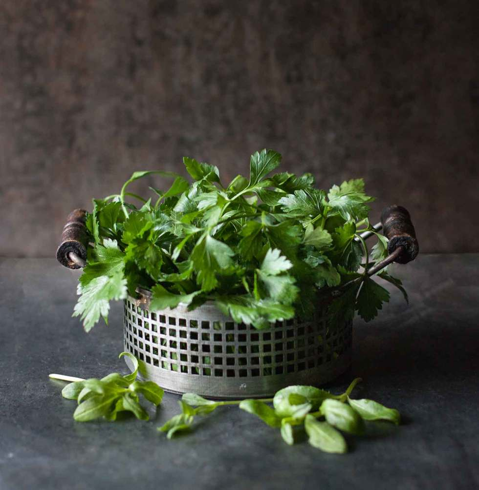 Fresh, leafy cilantro in a metal container against a dark background