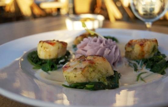 San Diego restaurant reviews – seafood, dim sum, pho