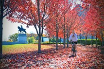 """""""There's a skating rink, museums, a zoo, an outdoor musical theater and restaurants"""" in Forest Park, the survey noted. Not to mention gorgeous scenery year-round. Here, a Washington University student rides through falling leaves in autumn. (Photo: James Byard/Washington University)"""