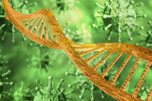 COVID-19 study looks at genetics of healthy people who ...