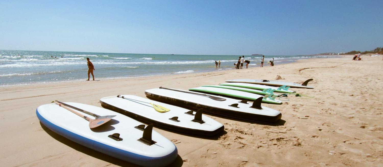 Surf & SUP board rental