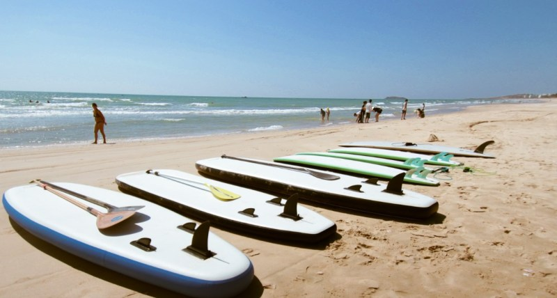 surf and sup board on the beach